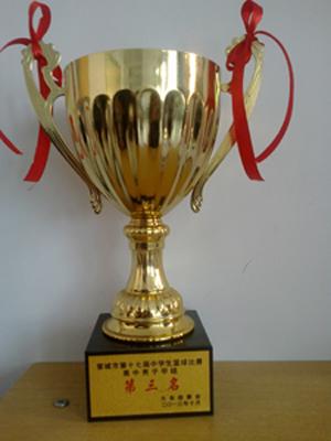 晋城市第十七jie中xue生篮球赛xixun